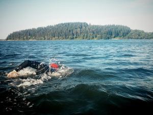 halswim2